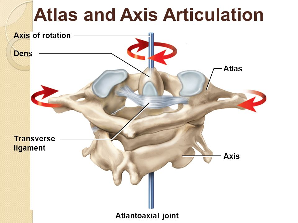 Atlas Joint Instability: Causes, Consequences And Solutions